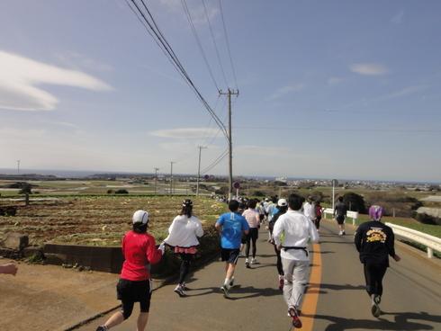 啓蟄の三浦国際マラソン2011_d0122797_12593013.jpg