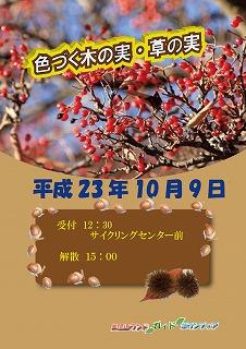 f0157427_8261839.jpg