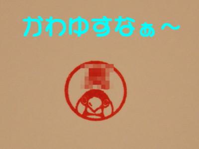 b0158061_21582884.jpg