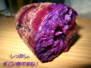 紫いも_f0144385_16535232.jpg