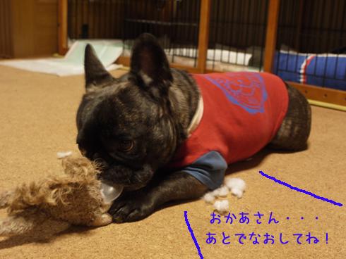 b0134197_20125080.jpg