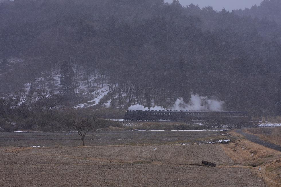 雪舞う伊許山 - 2010冬・真岡 -_b0190710_703852.jpg