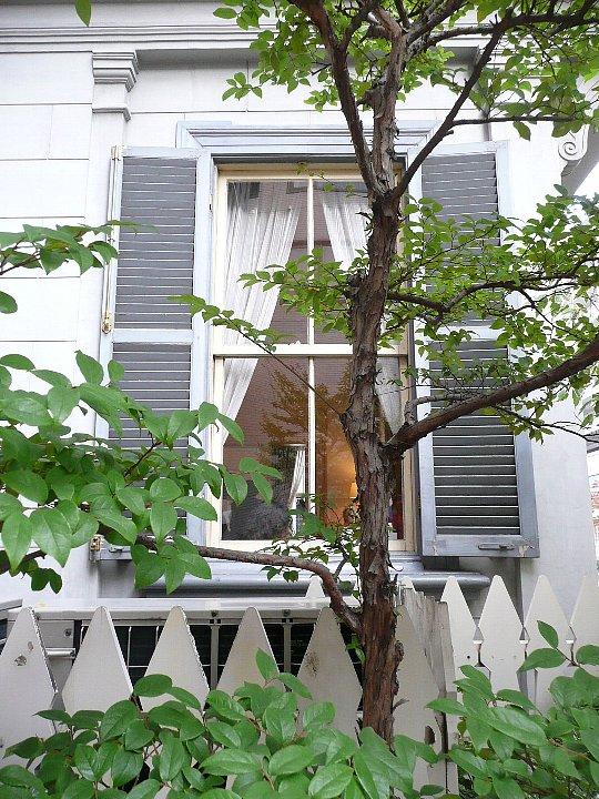 旧神戸居留地15番館_c0112559_1305654.jpg
