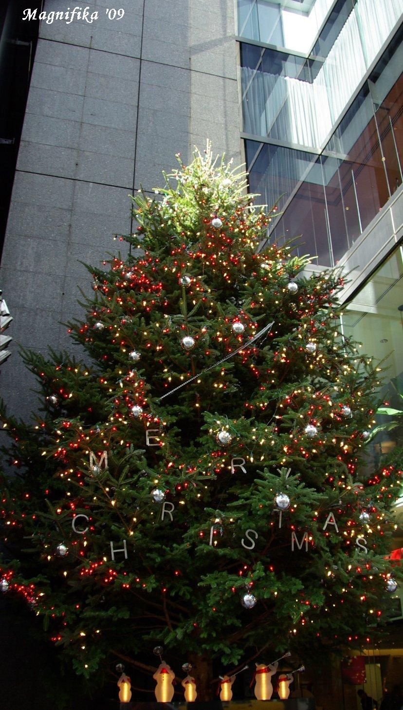 再び銀座のクリスマス Christmas Decoration Views of Ginza, Again_e0140365_20451995.jpg