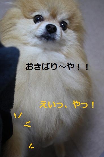 b0182968_126268.jpg