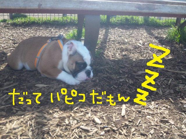 日曜の舎人ラン★ヨダレ女とよろしくベイビー♪♪_d0187891_8372336.jpg