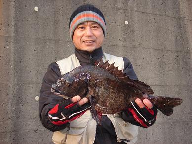 ★今年の初物黒鯛ゲッチュウー☆_e0147297_18263836.jpg