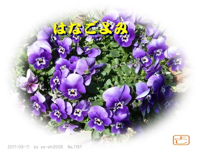 e0033229_2117879.jpg
