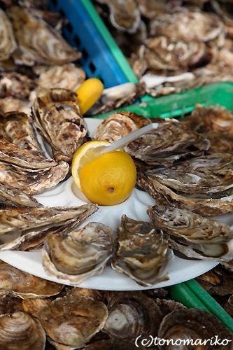 牡蠣のワイルド食べ放題_c0024345_6541232.jpg