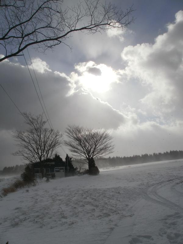 雪の日の久住高原~無事脱出_a0174458_10422025.jpg