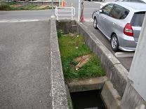 安浦町内に廃線跡を探して_e0175370_2118409.jpg