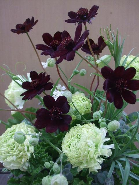 オークリーフ(チョコレートコスモスと緑色の花たちのアレンジメント)_f0049672_14331913.jpg