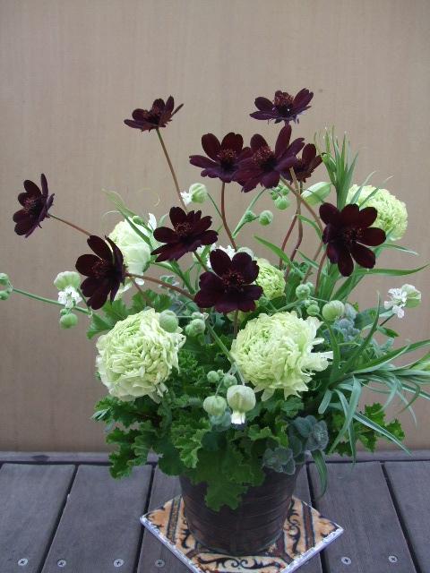 オークリーフ(チョコレートコスモスと緑色の花たちのアレンジメント)_f0049672_14343623.jpg