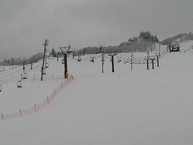 小雪から大雪_a0140584_13114214.jpg