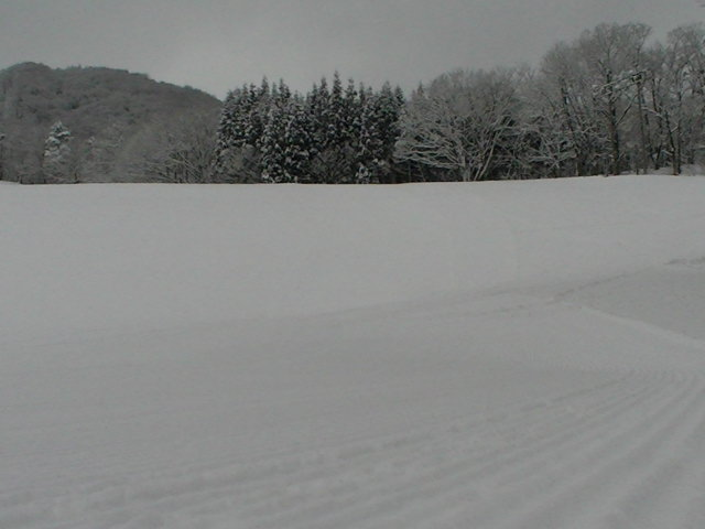 小雪から大雪_a0140584_13115491.jpg