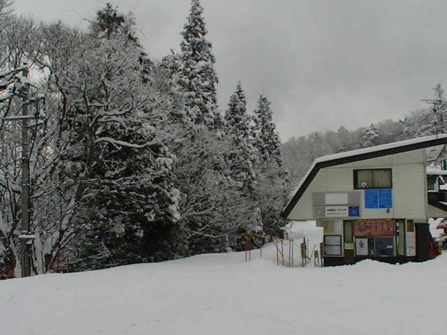 小雪から大雪_a0140584_1312320.jpg