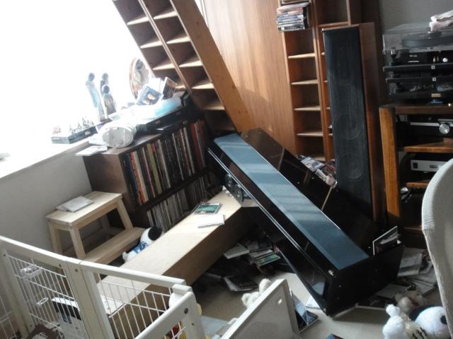 都心の高層階の地震(パグが吠える)_b0190666_7505470.jpg