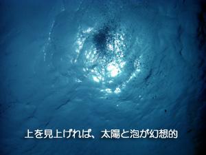 大興奮の体験ダイビング★_f0144385_1733332.jpg