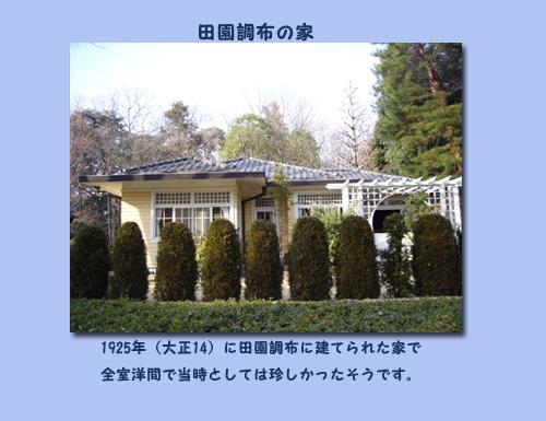 c0051105_1465181.jpg