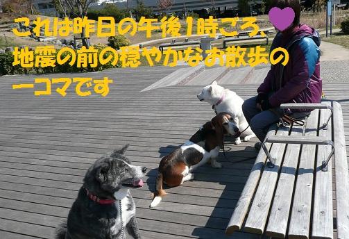 f0121712_0175189.jpg