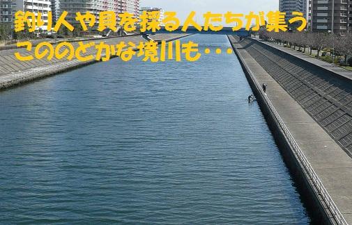 f0121712_018089.jpg