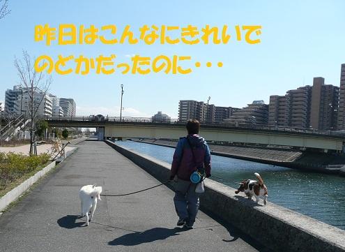 f0121712_018897.jpg