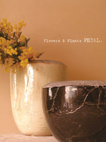 お花のお届けについて。_d0157716_14234014.jpg