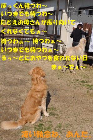 f0176830_20495719.jpg