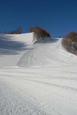 3-13 絶好の春スキー日和_b0068850_9582.jpg