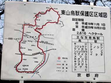 世界遺産・京都銀閣寺4._d0136282_13521114.jpg
