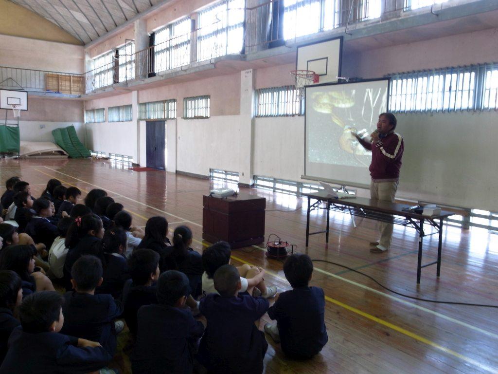 3/10 小学校_a0010095_224052.jpg
