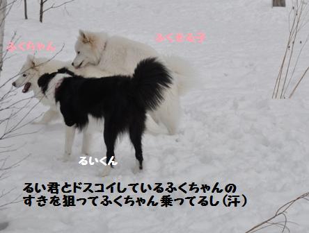f0212597_838514.jpg