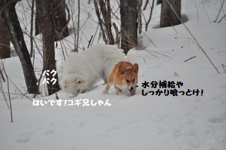 f0212597_8404063.jpg
