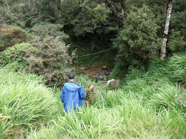 アジア学院の大柳由紀子さん来比。一緒にダータ山国立公園の最後の原生林を視察。_b0128901_19295488.jpg