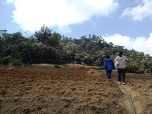 アジア学院の大柳由紀子さん来比。一緒にダータ山国立公園の最後の原生林を視察。_b0128901_19381064.jpg