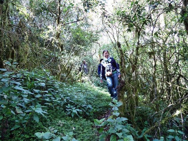 アジア学院の大柳由紀子さん来比。一緒にダータ山国立公園の最後の原生林を視察。_b0128901_1945058.jpg