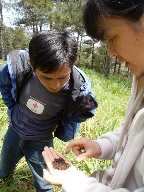 アジア学院の大柳由紀子さん来比。一緒にダータ山国立公園の最後の原生林を視察。_b0128901_2042562.jpg