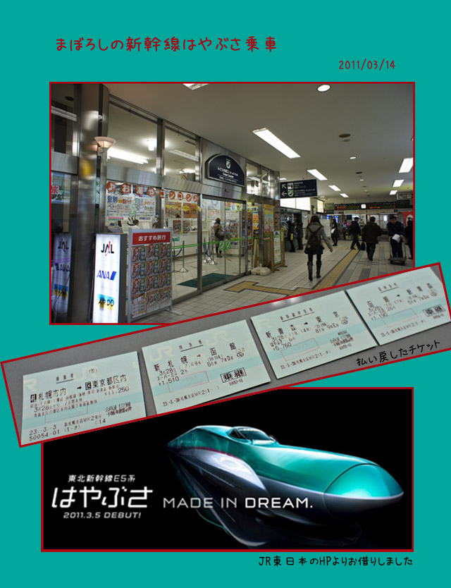 東北新幹線はやぶさ乗車・断念_b0019313_17272986.jpg