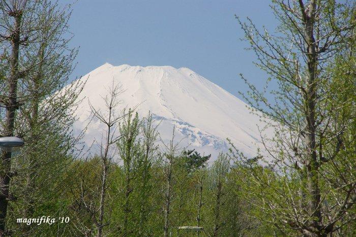 今日の富士山 Today\'s Mt. Fuji 4/25 \'10_e0140365_20392057.jpg
