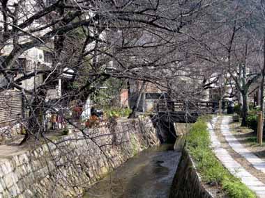 世界遺産・京都銀閣寺6._d0136282_2194087.jpg