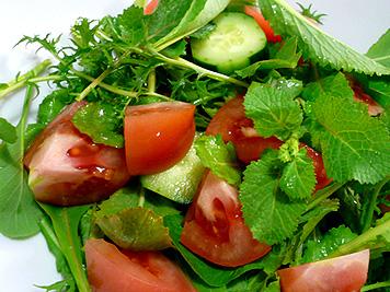 野菜_d0020309_935721.jpg