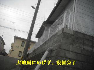 フェンス工事終了_f0031037_930222.jpg