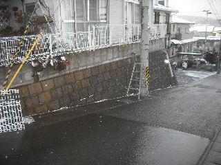 フェンス工事終了_f0031037_9304983.jpg