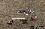 b0182640_20125973.jpg
