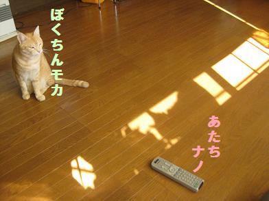 b0151748_1512171.jpg