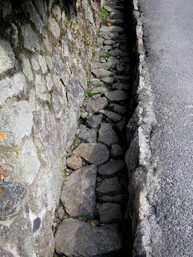 世界遺産・京都銀閣寺7._d0136282_834019.jpg