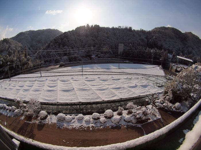 今朝は雪景色_c0116915_22142331.jpg