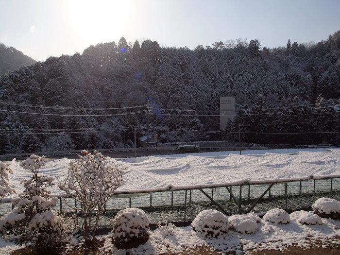 今朝は雪景色_c0116915_22144918.jpg