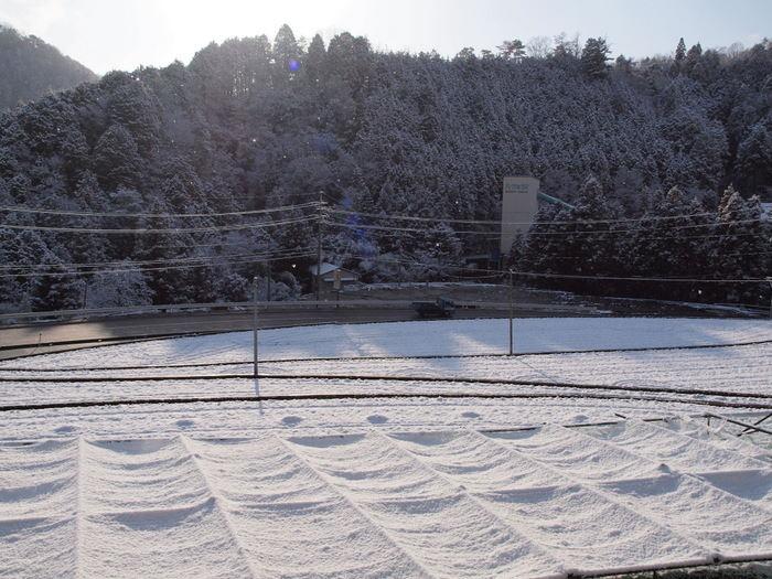 今朝は雪景色_c0116915_22152630.jpg