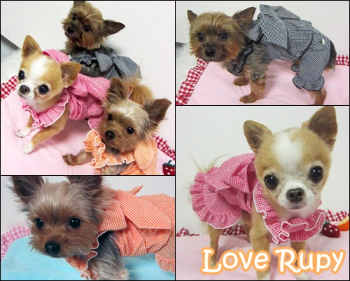 Rupy 2011 Spring Collection先行予約のご案内_b0084929_2342259.jpg